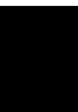 joe-morrison